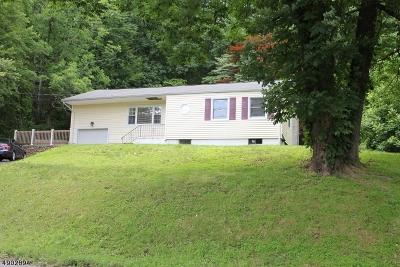 Roxbury Twp. Single Family Home For Sale: 142 Emmans Rd