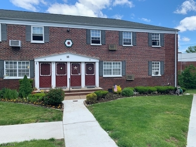 Roselle Park Boro Condo/Townhouse For Sale: 16d W Roselle Ave