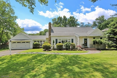 Mountainside Boro Single Family Home For Sale: 427 New Providence Rd
