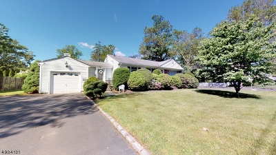 Mountainside Boro Single Family Home For Sale: 271 Summit Rd