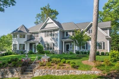 Millburn Twp. Single Family Home For Sale: 37 Slayton Dr