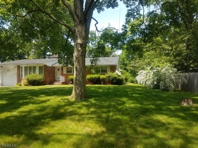 Plainfield City Single Family Home For Sale: 412-16 Parkside Rd