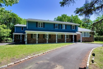 Scotch Plains Twp. Single Family Home For Sale: 5 Kevin Rd