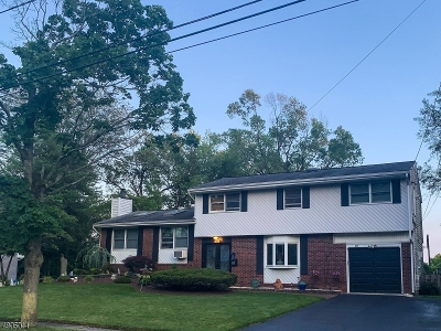 East Brunswick Twp. Single Family Home For Sale: 14 Bruning Rd
