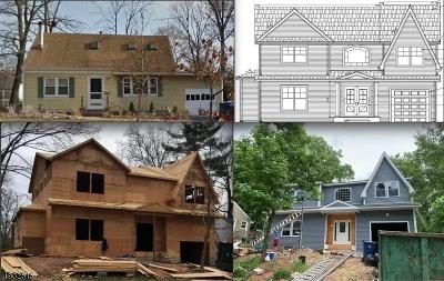 Fanwood Boro Single Family Home For Sale: 146 Belvidere Ave