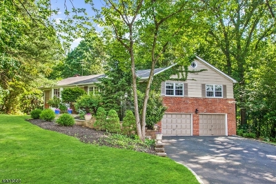 Millburn Twp. Single Family Home For Sale: 39 Addison Dr