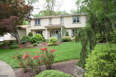 East Brunswick Twp. Single Family Home For Sale: 22 Neal Dr