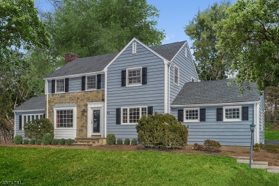 Millburn Twp. Single Family Home For Sale: 41 Hilltop Rd