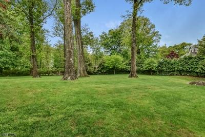 Millburn Twp. Single Family Home For Sale: 264 Long Hill Dr