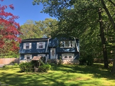 Roxbury Twp. Single Family Home For Sale: 16 Harriet Way