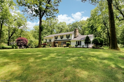 Scotch Plains Twp. Single Family Home For Sale: 920 Fox Hill Ln
