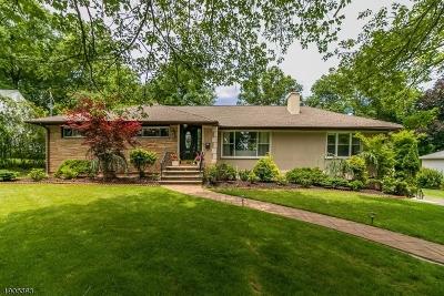 Mountainside Boro Single Family Home For Sale: 241 Pembrook Rd