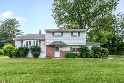 Roxbury Twp. Single Family Home For Sale: 28 Honeyman Dr