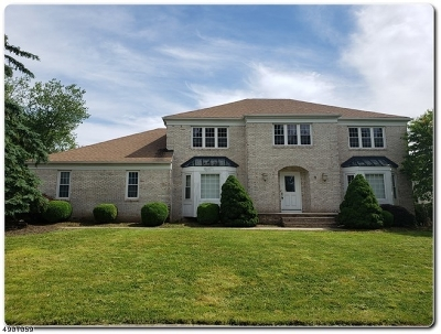 East Hanover Twp. Single Family Home For Sale: 9 Silver Spring Ct