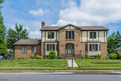 Edison Twp. Single Family Home For Sale: 564 Grove Ave
