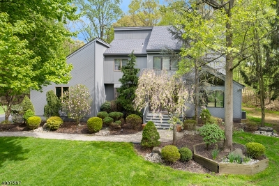 Scotch Plains Twp. Single Family Home For Sale: 14 Ravenswood Ln