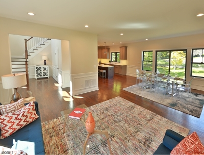 New Providence Boro Single Family Home For Sale: 31 Fairmount Rd