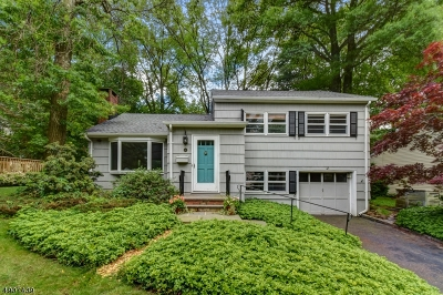 New Providence Boro Single Family Home For Sale: 60 Forest Rd