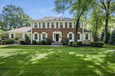 Florham Park Boro Single Family Home For Sale: 6 Burnside Ave