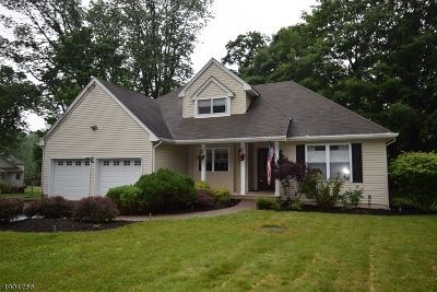 Randolph Twp. Single Family Home For Sale: 3 Harvey Ter