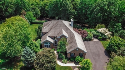 Denville Twp. Single Family Home For Sale: 8 Small Brook Cir