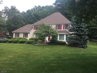 Randolph Twp. Single Family Home For Sale: 9 Rebecca Ct
