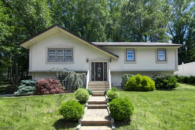 South River Boro Single Family Home For Sale: 60 Draeger Pl