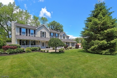Berkeley Heights Twp. Single Family Home For Sale: 304 Lincoln St
