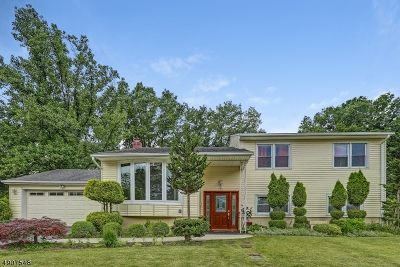 Springfield Twp. Single Family Home For Sale: 136 Briar Hills Circle