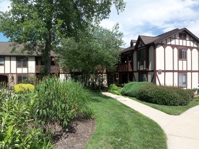 Chatham Twp. Condo/Townhouse For Sale: 11d Sentinel Ct #D