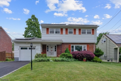 Scotch Plains Twp. Single Family Home For Sale: 855 Ternay Ave