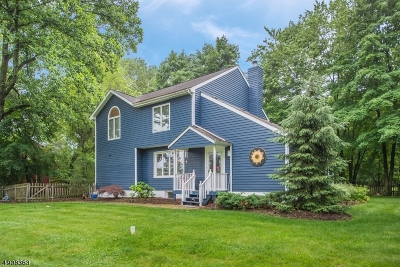 Randolph Twp. Single Family Home For Sale: 2 Dawson Rd