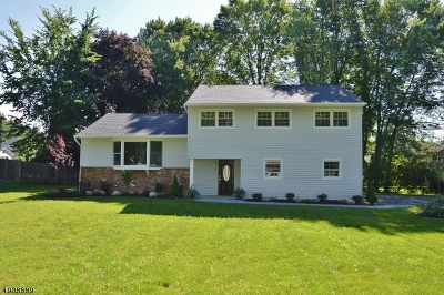 East Hanover Twp. Single Family Home For Sale: 4 W Wilson Ave
