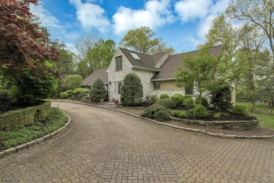 Florham Park Boro Single Family Home For Sale: 141 Summit Rd