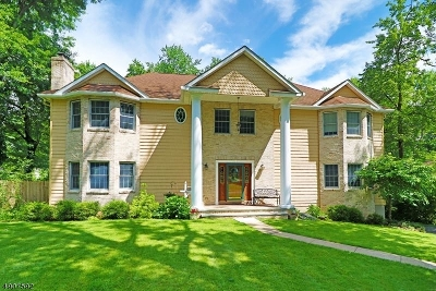 East Hanover Twp. Single Family Home For Sale: 28 Fairview Dr