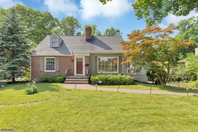 New Providence Boro Single Family Home For Sale: 821 Mountain Ave