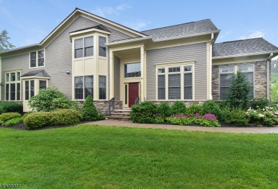 Essex County, Morris County, Union County Condo/Townhouse For Sale: 40 Sterling Drive