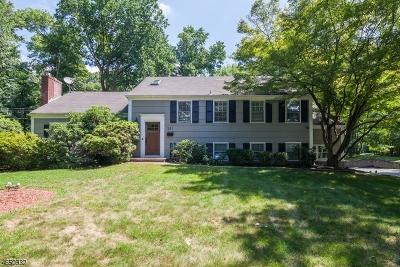Livingston Twp. Single Family Home For Sale: 381 Walnut St