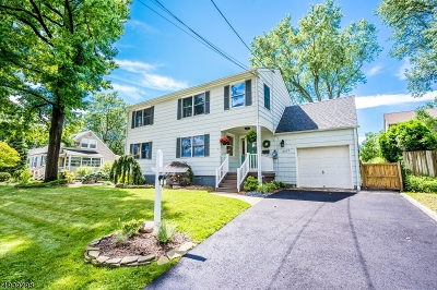 Scotch Plains Twp. Single Family Home For Sale: 2077 Elizabeth Ave