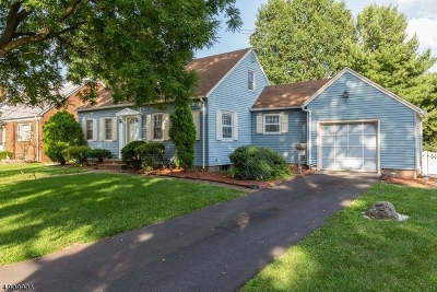 Linden City Single Family Home For Sale: 229 Palisade Rd