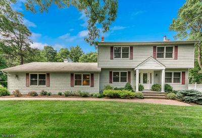Roxbury Twp. Single Family Home For Sale: 8 Cathy Pl