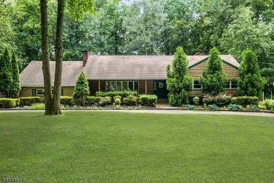 Scotch Plains Twp. Single Family Home For Sale: 57 Highlander Dr