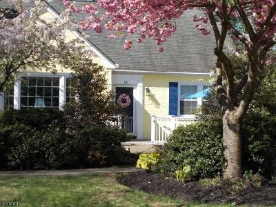 Mountainside Boro Single Family Home For Sale: 16 Tanglewood Ln