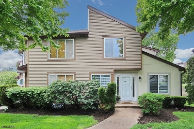 Springfield Twp. Condo/Townhouse For Sale: 3509 Park Pl