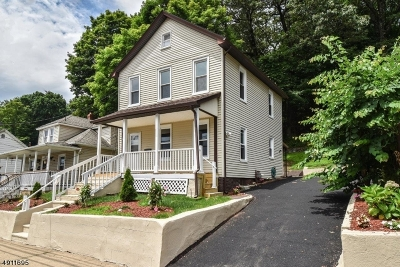 Dover Town Single Family Home For Sale: 139 Mt Hope Ave