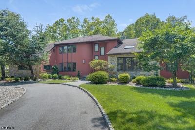 Florham Park Boro Single Family Home For Sale: 28 1st St