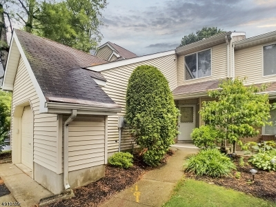 North Brunswick Twp. Condo/Townhouse For Sale: 106 Nathan Dr