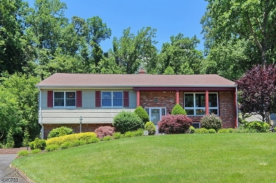 Mountainside Boro Single Family Home For Sale: 290 Ravens Wood