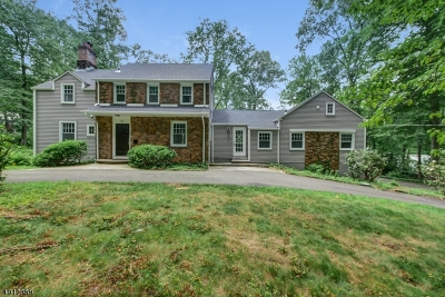 Berkeley Heights Twp. Single Family Home For Sale: 31 Lee Ln