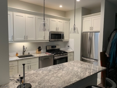 Jersey City Condo/Townhouse For Sale: 263 Tenth St #2D